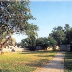 The community of Yitav