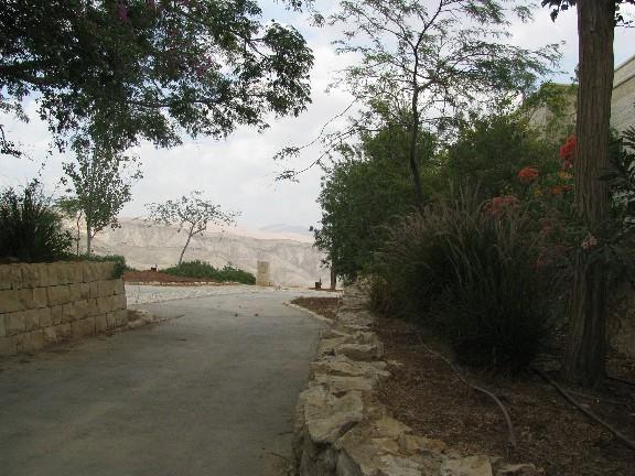 Road in Alon
