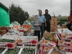 Volunteers with boxes of food for distribution