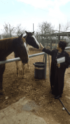 Margy Pezdirtz with one of the horses at Bet Hagai