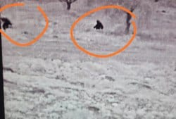 Terrorists caught in the act by Rechalim's thermal imaging camera